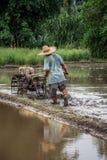 Agricoltore tailandese che guida il trattore dell'attrezzo alla risaia dell'aratro prima della cultura del riso, Chiang Mai, Tail Immagine Stock