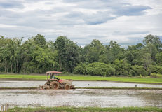 Agricoltore tailandese in trattore pesante durante il lavoro di agricoltura di coltivazione Fotografie Stock Libere da Diritti