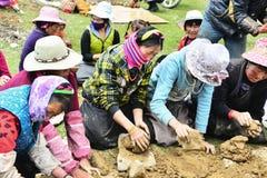 Agricoltore tibetano Fotografie Stock Libere da Diritti