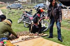 Agricoltore tibetano Fotografie Stock