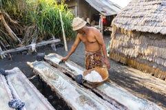 Agricoltore tradizionale del sale Fotografia Stock