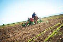 Agricoltore in trattore antiquato Fotografia Stock