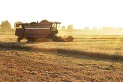 Agricoltore in trattore che guida al campo Immagini Stock