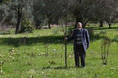 Agricoltore turco che sta nel campo Fotografie Stock