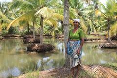 Agricoltore in una laguna della noce di cocco Fotografia Stock Libera da Diritti