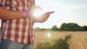 Agricoltore Use Digital Tablet al tramonto video d archivio