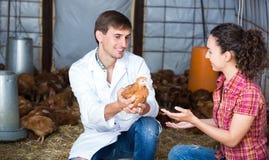 Agricoltore veterinario e femminile in pollaio Fotografie Stock Libere da Diritti