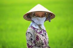 Agricoltore vietnamita Immagine Stock Libera da Diritti