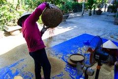 Agricoltore vietnamita che lavora nella fonte della loro casa Immagine Stock Libera da Diritti