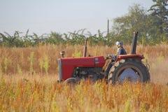 Agricoltore Wears Protective Equipment Fotografia Stock Libera da Diritti