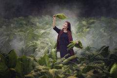 Agricoltore Woman Fotografie Stock