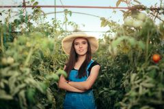 Agricoltore Woman Business Owner in piccola serra Fotografia Stock
