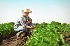 Agricoltore Working nel campo Fotografie Stock Libere da Diritti