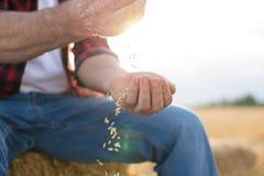 Agricoltore Working nel campo Immagini Stock Libere da Diritti