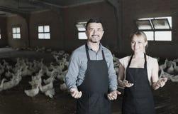 Agricoltori allegri che parlano nel capannone con le anatre Immagine Stock Libera da Diritti