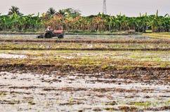 Agricoltori che arano con il trattore Fotografia Stock