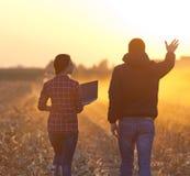 Agricoltori che camminano sul campo Fotografie Stock Libere da Diritti