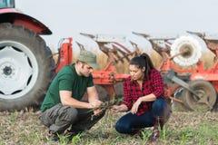 Agricoltori che examing sporcizia mentre il trattore sta arando il campo Fotografie Stock Libere da Diritti