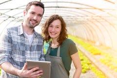 Agricoltori che guardano lo stats sulla compressa Immagine Stock Libera da Diritti