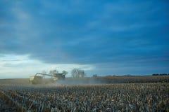 Agricoltori che lavorano al crepuscolo per raccogliere mais Immagini Stock Libere da Diritti