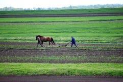 Agricoltori che lavorano al loro diagramma Fotografia Stock