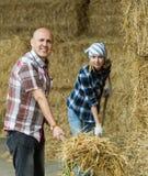 Agricoltori che lavorano con il fieno in granaio Fotografia Stock