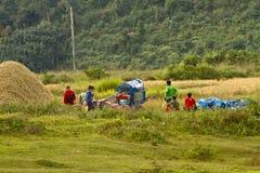 Agricoltori che lavorano nelle risaie nel paesaggio rurale Vang Vieng laos Immagine Stock Libera da Diritti