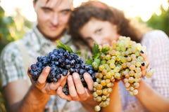 Agricoltori che mostrano l'uva Fotografia Stock