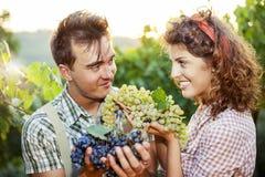 Agricoltori che mostrano l'uva Immagini Stock Libere da Diritti