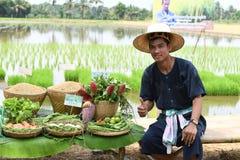 Agricoltori che piantano riso dimostrando economia sufficiente Immagine Stock