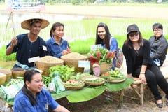 Agricoltori che piantano riso dimostrando economia sufficiente Fotografie Stock