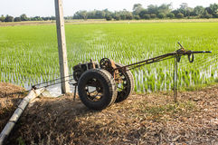 Agricoltori che pompano acqua al riso del gelsomino Fotografia Stock