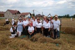 Agricoltori che posano nel campo durante il raccolto Fotografie Stock Libere da Diritti