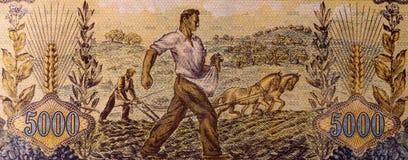 Agricoltori che seminano e che arano Fotografia Stock Libera da Diritti