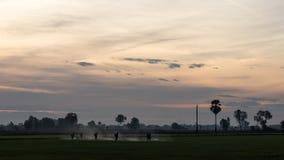 Agricoltori che spruzzano in riso Fotografie Stock