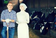 Agricoltori che stanno insieme nella stalla Fotografia Stock