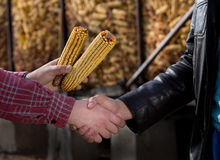 Agricoltori che stringono le mani Fotografie Stock
