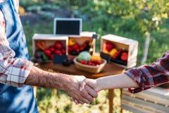 Agricoltori che stringono le mani al mercato Immagini Stock
