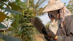 Agricoltori che usando tecnologia per contribuire a conservare i dati agricoli video d archivio