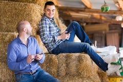 Agricoltori con gli smartphones sulla pila del fieno Fotografia Stock Libera da Diritti