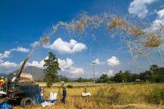 Agricoltori con il macchinario di produzione del grano nel campo Fotografie Stock