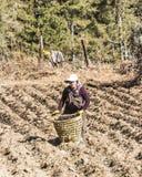 Agricoltori del Bhutanese sul campo Immagini Stock Libere da Diritti