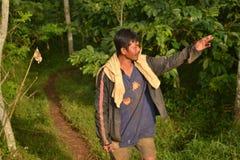 Agricoltori del caffè Fotografie Stock Libere da Diritti