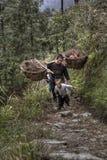 Agricoltori del figlio e del padre che ritornano dal lavoro di campo, Cina rurale Immagini Stock