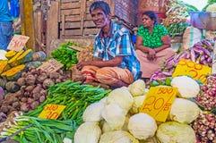 Agricoltori dello Sri Lanka Immagini Stock