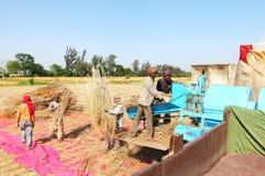 Agricoltori e campo Fotografie Stock