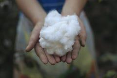 Agricoltori e cotone Fotografie Stock Libere da Diritti