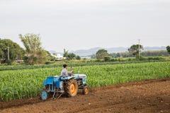 Agricoltori e trattori del cereale in Tailandia Fotografia Stock Libera da Diritti