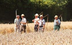 Agricoltori francesi anziani Fotografie Stock Libere da Diritti