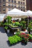 Agricoltori Greenmarket NYC Fotografie Stock Libere da Diritti